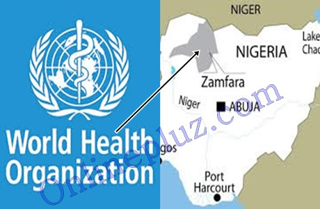 World Health Organization Official