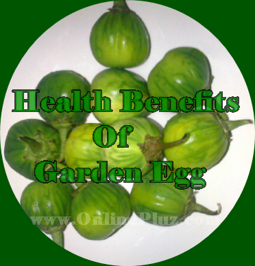 Benefits Of Garden Egg