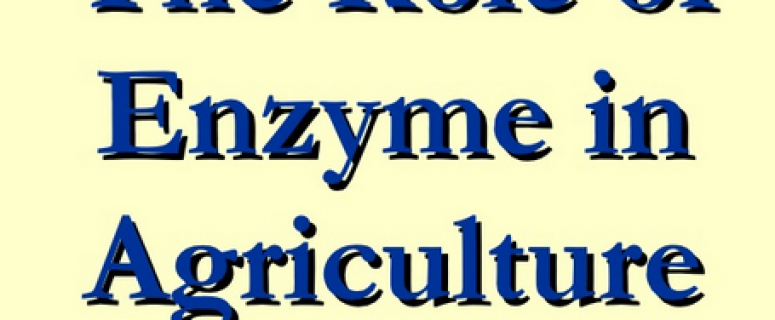 Role Of Enzyme In Agriculture