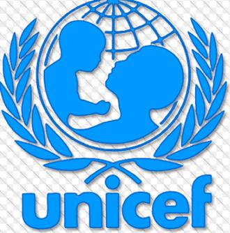 UNICEF/SPIC 2016 Undergraduate Scholarship