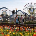 World Most Popular Amusement Park Themes