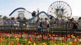 most popular amusement park themes