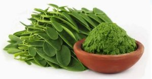 Health Benefits Of Moringa |  Importance Of Moringa