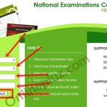 2016 NECO Nov/Dec Examination Results Is Out – Check Your Result Here