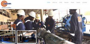 Top Oil Companies In Nigeria