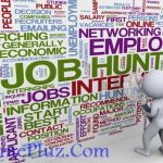 Vital Steps for Successful Job Hunting You Should Consider