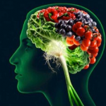 Best Food For Brain Function You Should Take Regularly