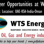 Graduate Trainees Recruitment For WTS Energy – Apply Now
