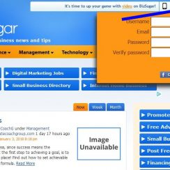 Bizsugar Account Registration