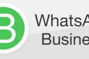 download WhatsApp business