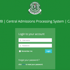 Check JAMB Admission Status On JAMB CAPS