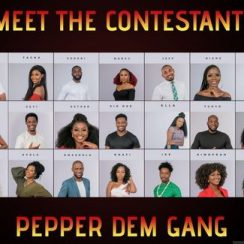 Big Brother Naija 2019 Housemate