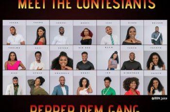 Big Brother Naija 2019 Housemate